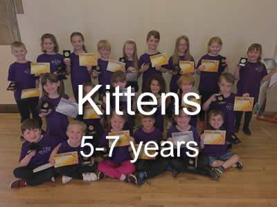 Our_Groups_-_Kittens.jpg